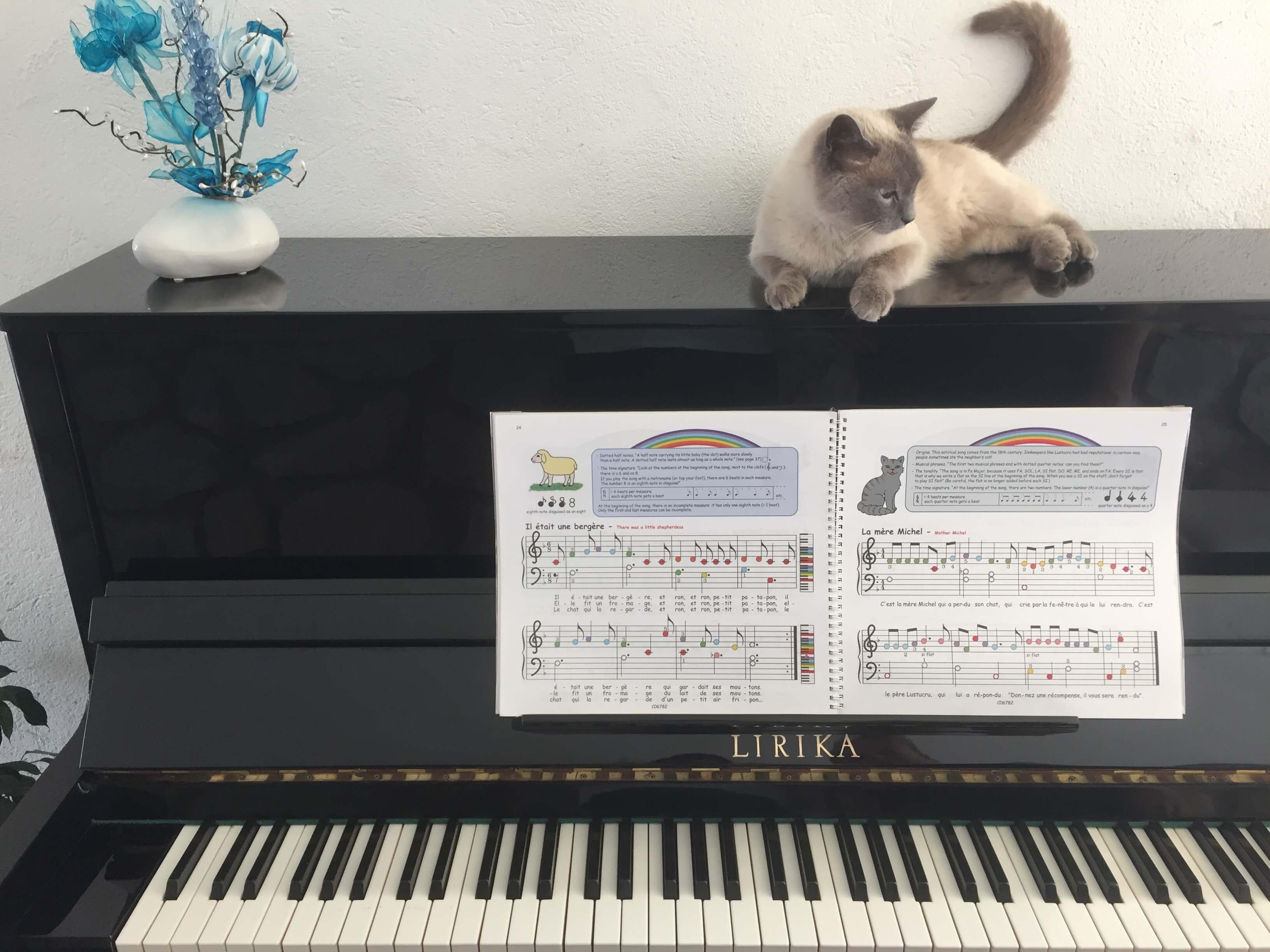chat sur un piano arc en ciel